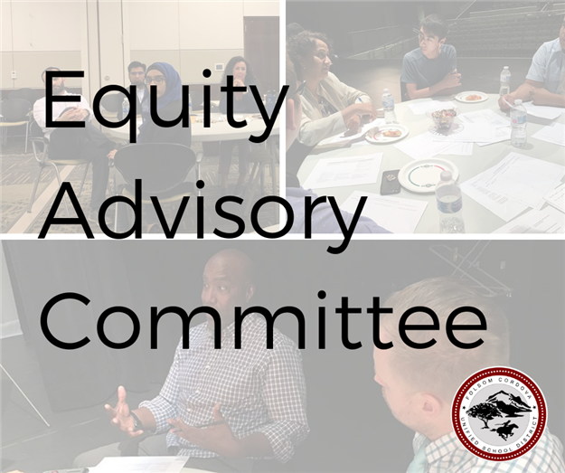 Graphic of Equity Advisory Committee