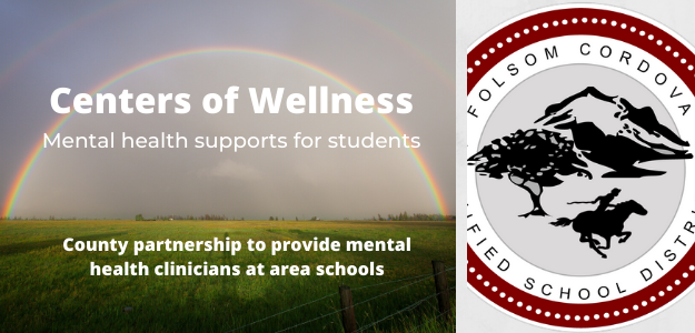 Graphic for Centers of Wellness