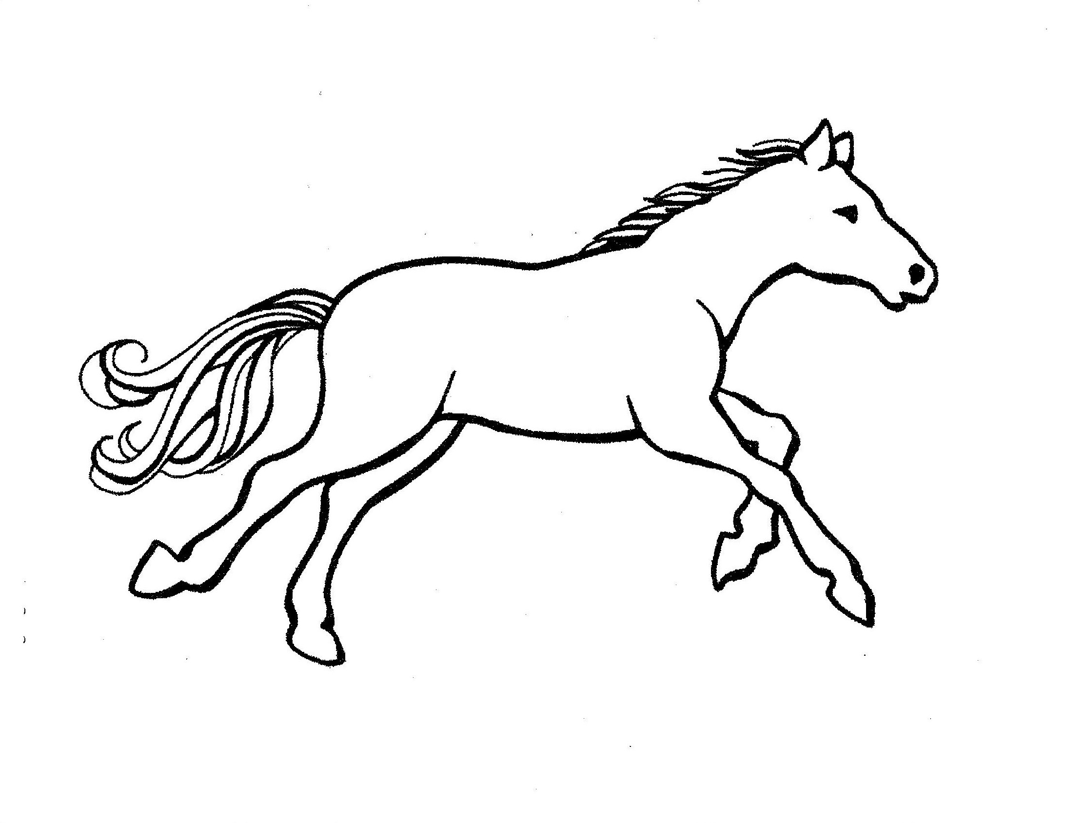 Horse Outline Printabl...
